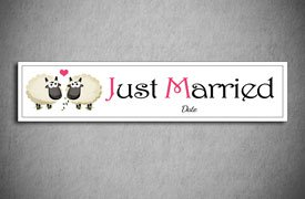 just married number plate