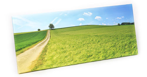 Panoramic large canvas print