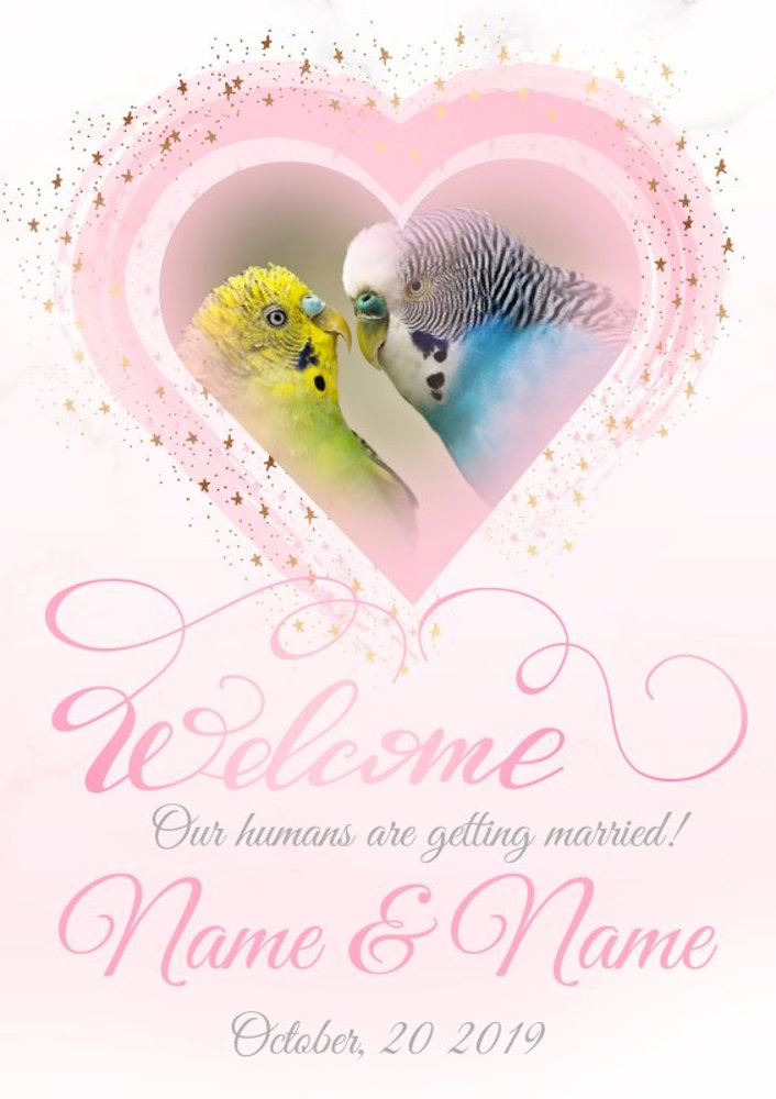 welcome46.psd